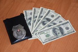 Imitacja dolarów na granicy